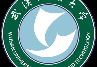 دانشگاه ووهان چین (Wuhan University )